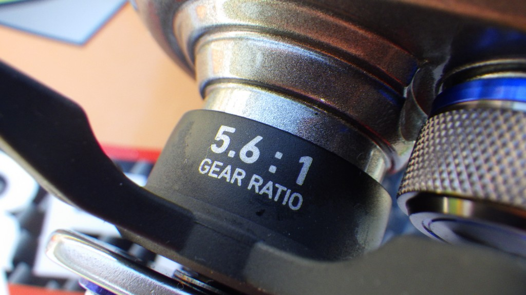 RIMG6071