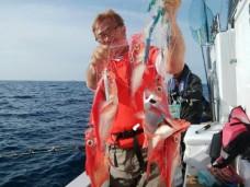 orca-image-1493814297201.jpg_1493814297456 (374x640)