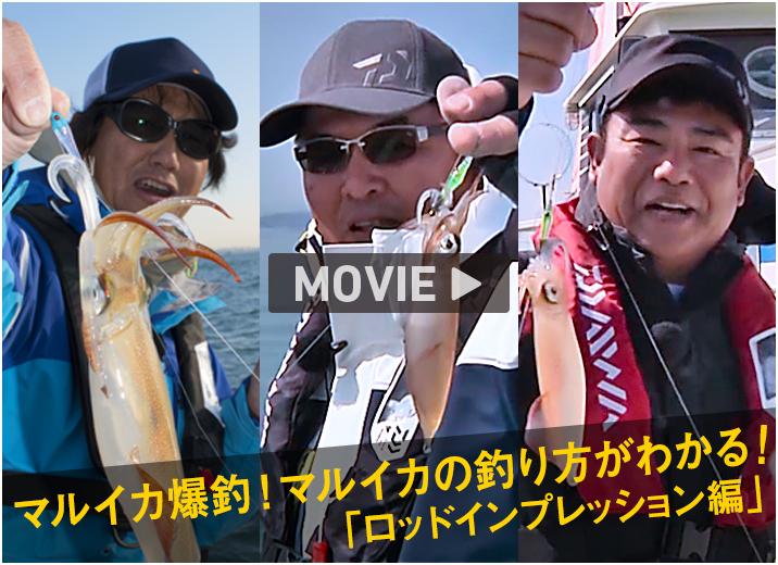 マルイカ爆釣!マルイカの釣り方がわかる!「ロッドインプレッション編」