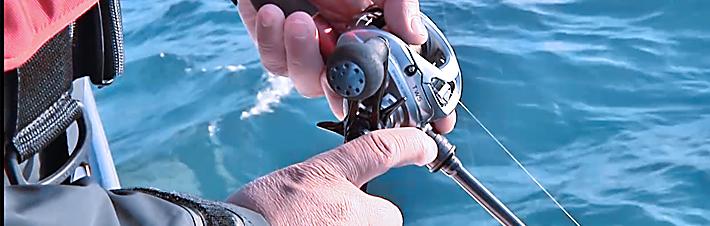 マルイカ爆釣!マルイカの釣り方がわかる!「用品インプレッション編」