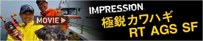 bnr_impression_rt-ags-sf