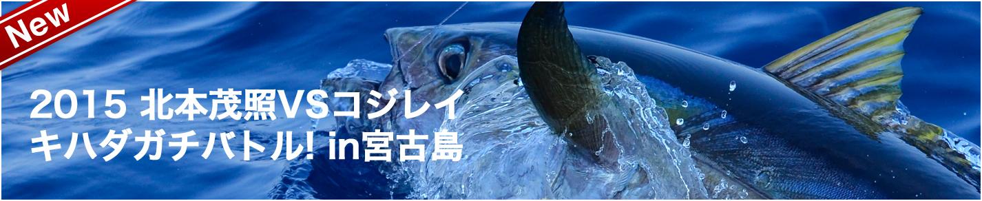 head_kihada-gachibattle-miyakojima