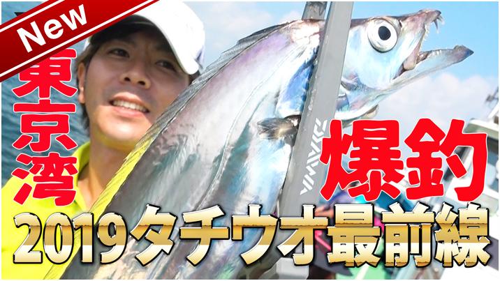 2019タチウオ最前線 ~夏タチ編~