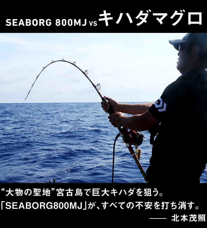 キハダマグロ vs SEABORG 800MJ