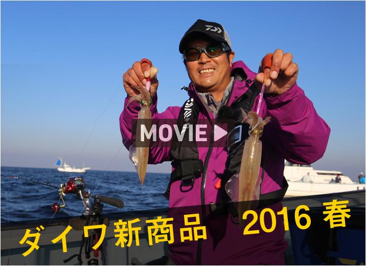 ダイワ ヤリ・スルメ 新商品2016春