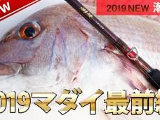 madai_banner2019
