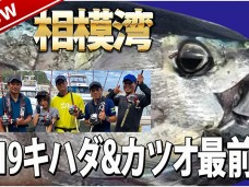 kihada_katsuo2019